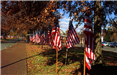 Flags set up outside in the fall with leaves